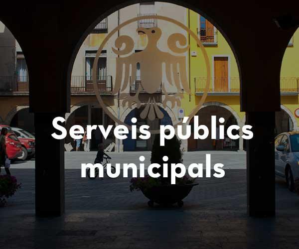 Serveis públics municipals