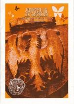 2001 MONOGRÀFIC FESTA MAJOR